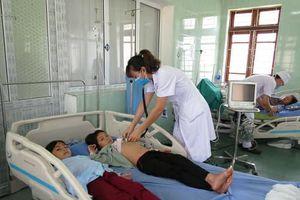 Quảng Ninh: 5 người Dao ngộ độc nấm rừng qua cơn nguy kịch