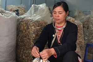 Vì sao người mắc bệnh xương khớp tìm đến lương y Triệu Thị Hòa?