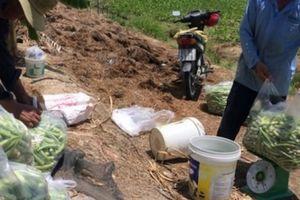 Vĩnh Long: Cái mới ở vùng nông thôn mới Bình Minh