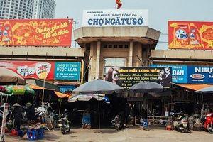 Đề xuất cải tạo toàn bộ hệ thống chợ Hà Nội