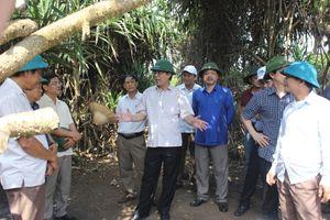 Chủ tịch tỉnh Quảng Trị khảo sát tuyến du lịch Cửa Tùng - Mũi Trèo