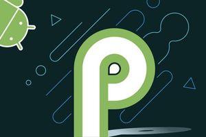 Hướng dẫn cách cập nhật Android P (9) cho smartphone được hỗ trợ