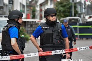 Cảnh sát Thuy Sĩ bắt giữ nam thanh niên có ý định tấn công trường học