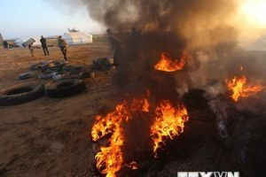 Ít nhất 16 người Palestine thiệt mạng trong cuộc đụng độ tại Gaza