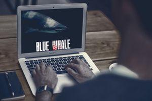 Dấu hiệu nhận biết con bạn đang là nạn nhân của trò chơi 'đoạt mạng' Cá voi xanh