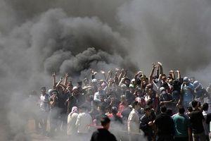 Bạo lực bùng phát trong ngày Mỹ mở cửa Đại sứ quán tại Jerusalem, 41 người Palestine chết