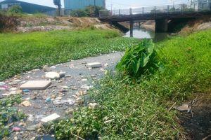 Đà Nẵng: Dân than khổ vì sống cạnh dòng 'kênh đen'