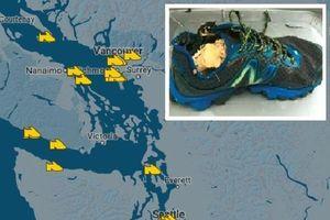 Bí ẩn hàng loạt bàn chân người dạt vào bờ biển Canada
