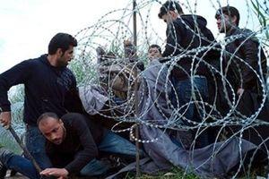 Nhóm Visegrad phá vỡ châu Âu không biên giới
