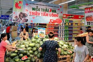 Big C giải cứu 250 tấn dưa hấu cho nông dân Quảng Ngãi, Quảng Nam