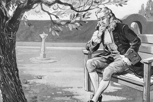Quả táo rơi trúng đầu Isaac Newton và những lầm tưởng phổ biến