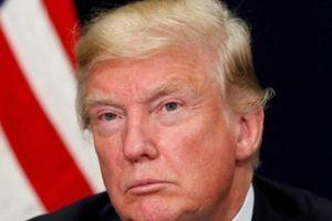TQ nhắc Trump cách xử sự khi Triều Tiên dọa hủy thượng đỉnh