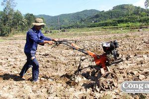 Nguy cơ bỏ hoang ruộng lúa do thiếu nước canh tác