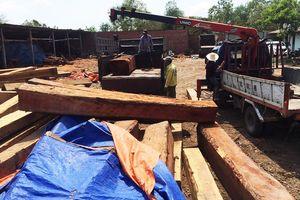 Gia Lai: Bắt khẩn cấp giám đốc công ty giấu hơn 60m3 gỗ trái phép