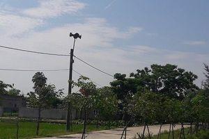 Hà Tĩnh: Loa phát thanh xã bị chèn sóng 'lạ'