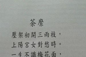 HOA ĐỒ MI - Một bài thơ trữ tình rất hay của Nguyễn Ức đời Trần