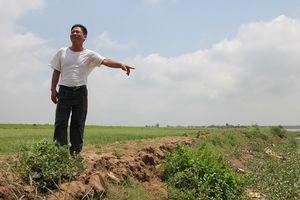 'Tự dưng thấy' bia đá 'liên quan đến mộ chí Trạng Trình Nguyễn Bỉnh Khiêm'