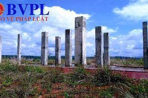 Đề nghị kỷ luật hàng loạt Giám đốc các sở, ban ngành tại tỉnh Đăk Nông