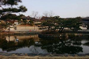 Thăm làng Namsangol ngay giữa lòng Seoul tấp nập