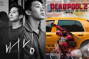 Sau 'Avengers: Infinity War', phim nội địa Hàn Quốc lại thua 'Deadpool 2'