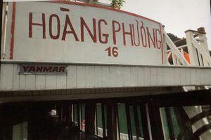 Tỉnh Quảng Ninh lên tiếng vụ du khách Úc gặp 'ác mộng trên vịnh Hạ Long'