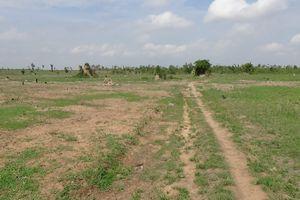 Điều tra vụ công ty Rừng Xanh để mất 2.270 ha đất rừng, rừng tự nhiên