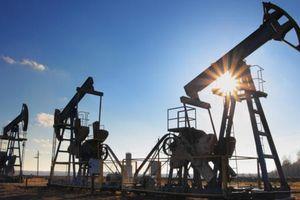 Giá dầu giảm nhẹ giữa bối cảnh OPEC thiếu nguồn cung