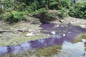 Thanh Hóa: Công ty Cổ phần bao bì Lam Sơn xả thải trực tiếp ra môi trường