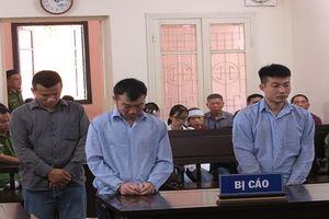 Hà Nội: Lĩnh án tù vì đâm chết kẻ trộm chó