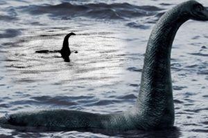 Bản tin 20H: Xác định sự tồn tại của quái vật hồ Lock Ness