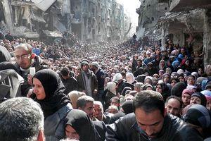 'Người tị nạn đang trên đường trở lại Damascus'
