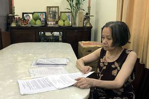 Điểm mờ trong bản án 'di chúc của người phụ nữ hai quốc tịch'