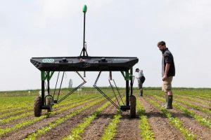Robot diệt cỏ đe dọa 'nồi cơm' các tập đoàn hóa chất