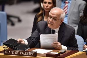 Mỹ tung chiêu cắt giảm tài trợ 2 cơ quan Liên Hợp Quốc vì kết nạp Palestine