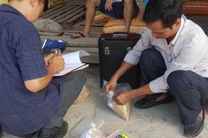 Phát hiện nhiều cơ sở kinh doanh lúa giống giả ở Đồng Tháp: Nông dân lãnh đủ
