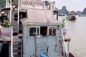 Xử phạt chủ tàu Hoàng Phương 16 và đại lý bán tour bát nháo cho khách