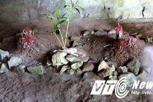 Kỳ bí 3 ngôi mộ cổ bị trói trong Hang Ma Cúc Phương