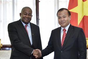 Thứ trưởng Ngoại giao Vũ Hồng Nam tiếp tân Đại sứ Mozambique