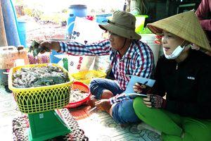Sản xuất tôm - lúa thích ứng biến đổi khí hậu