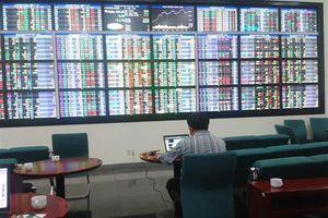 Nhiều cổ phiếu bị kiểm soát, tạm ngừng giao dịch do vi phạm công bố thông tin