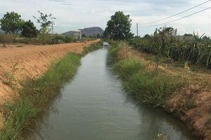 Tăng cường xả nước để sinh hoạt và sản xuất