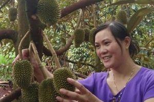 Chị nông dân phá bỏ vườn cà phê, trồng vườn cây ăn quả thu hơn nửa tỷ/năm