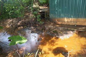 Nhiều cơ sở sản xuất gây ô nhiễm môi trường