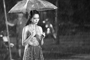 Dương Kim Ánh: 'Phụ nữ phải được đối xử công bằng, đừng coi chúng tôi là phái yếu mà ức hiếp'