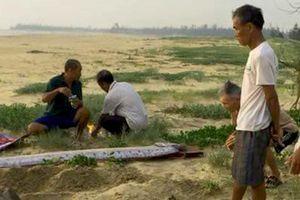 Cá mái chèo liên tục dạt vào bờ biển Quảng Bình