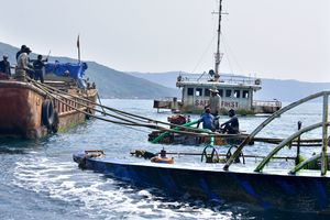 'Xẻ thịt' tàu du lịch tìm 5 thuyền viên mất tích ở biển Quy Nhơn