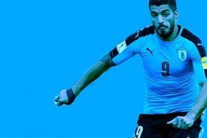 Đội tuyển Uruguay: Ứng viên tiềm năng cho chức vô địch