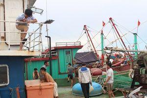 Tàu vỏ thép Hà Tĩnh 'đỏ mắt' tìm lao động ra khơi đánh bắt xa bờ