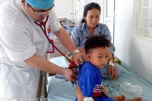 9 người nhập viện cấp cứu do ngộ độc nấm sau bữa trưa