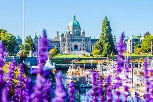Những điểm đến cực hấp dẫn để bạn check in ở Canada